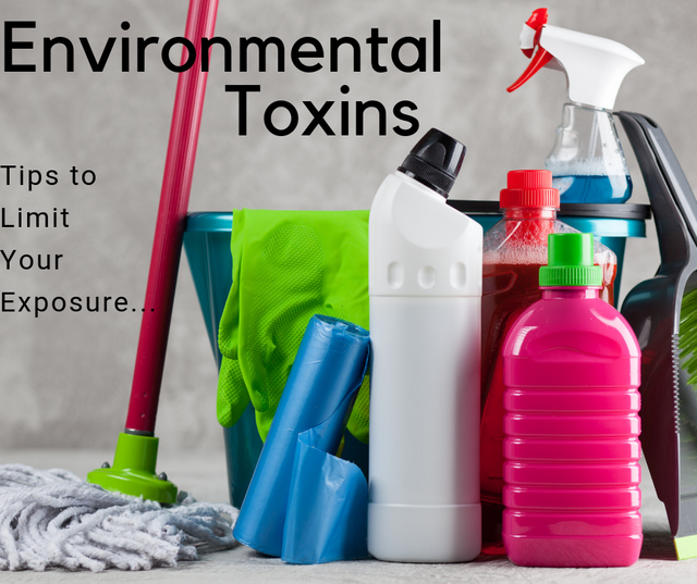 Environmental Toxins: Unfortunately they are Everywhere! Original ...