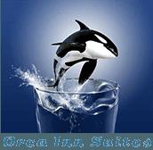 Orca Inn Suites - logo