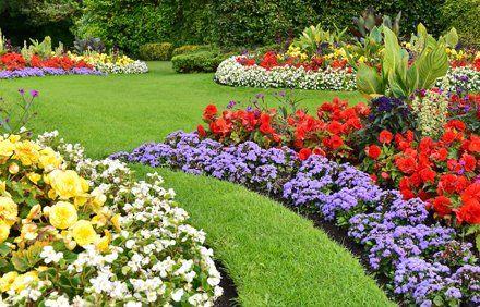 North Star Landscaping Garden Center Hayward Wi