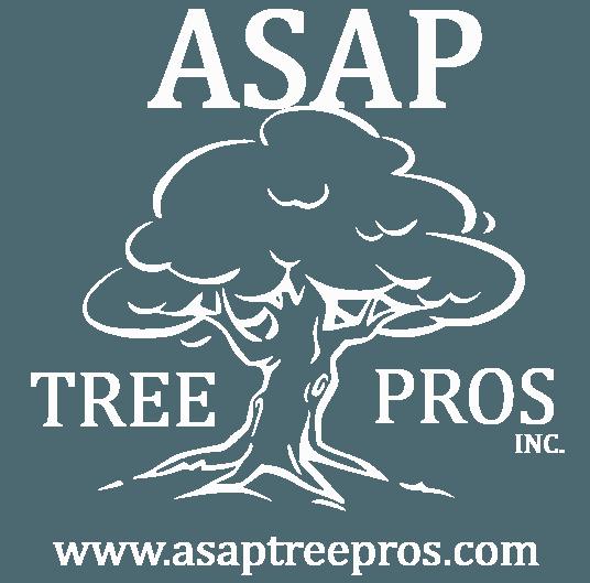 ASAP Tree Pros Inc - Logo