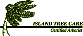Island Tree Care  - Logo