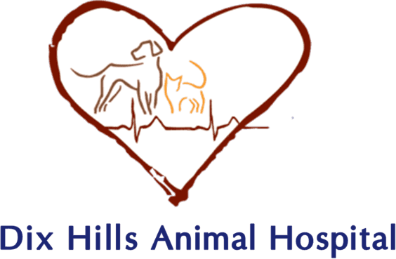 Dix Hills Animal Hospital - Logo