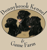 Donnybrook Kennel And Inn - logo
