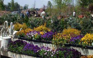 Plant farm