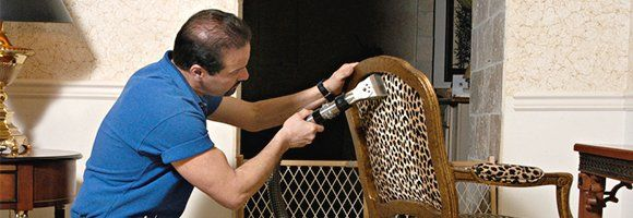 Upholstery cleaner working on leopard-print desk chair