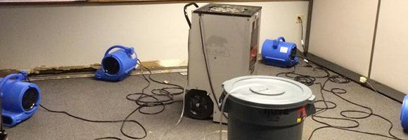 Water damage clean-up in a basement with floor fans and generator