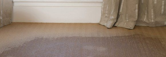 Close-up of soaked carpet in a room with floor length curtains