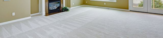 Change the Look of Your Home With Our Carpets