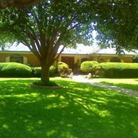 Quality Lawn Maintenance