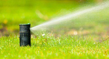 Designed Irrigation System