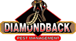 Diamondback Pest Management Inc. - logo