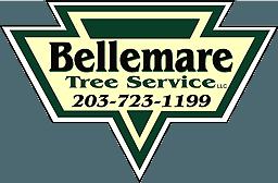 Bellemare Tree Service LLC - Logo