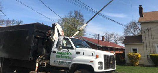 Tree and Crane Services | Bucket Truck Tree Service Flanders