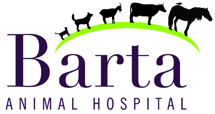 Barta Animal Hospital - logo