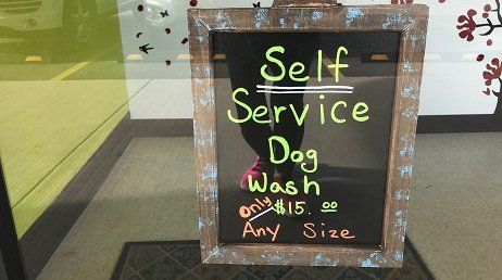 Okey doggy wash and groom llc haircuts colorado springs co self service dog wash solutioingenieria Images