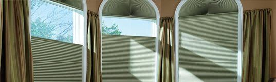 Window Coverings or Blinds