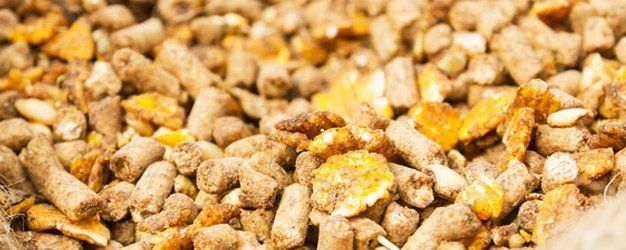 Wood pellet prices brands crivitz wi