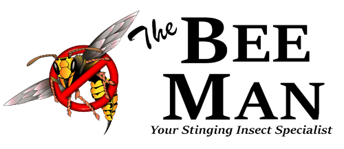 The Bee Man - Bee & Wasp Removal