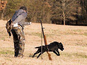 East Texas Elite Kennels Dog Trainers Gilmer Tx