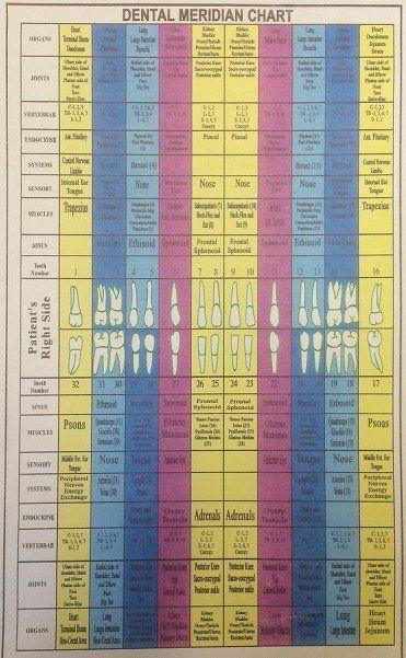 Dental Meridian Chart