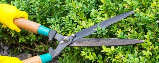 Sharpening Services | Garden Tool Sharpening | Omaha, NE