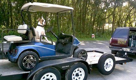 Caddieshack Golf Cart Sales Amp Repair Llc Inverness Fl