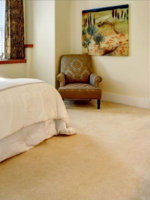 Adams Carpet Center Carpet Repairs Philadelphia PA