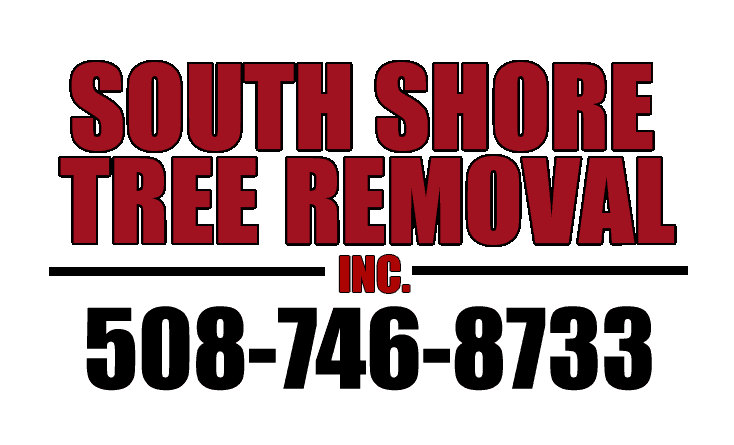 South Shore Tree Removal Inc