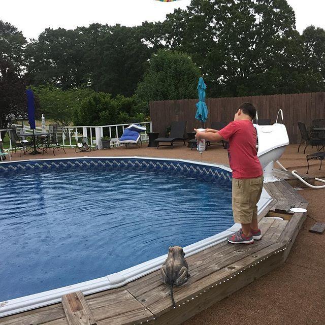 Backyard Pools | Pool Models | Tupelo, MS
