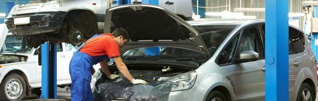 Auto Damage Assessment