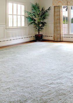 Jerry\'s Carpet Sales and Service   Flooring   York, PA