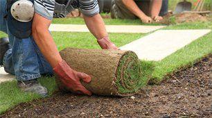 rolling grass lawn