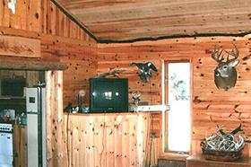 Quality Wood Logs