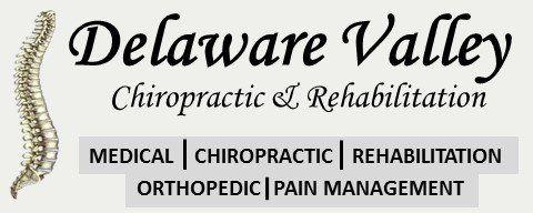Delaware Valley Chiropractic & Rehab Logo