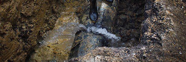 Water Leak Detection   Wall Leak   Vero Beach, FL