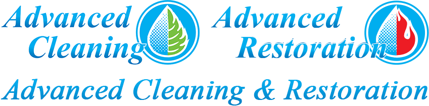 Mold Remediation Mold Removal Sarasota Fl