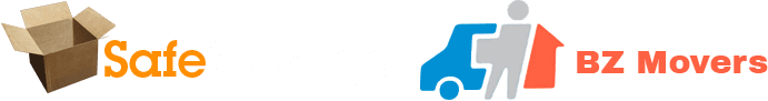 Safe Storage - Logo