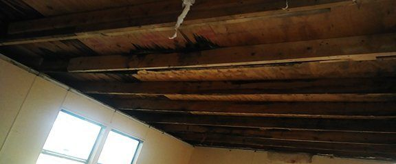 Mobile Home Interior Repair | Window Replacement Plant City on mobile home log, mobile home floor, mobile home chandelier, mobile home room, mobile home tn, mobile home wiring, mobile home stone, mobile home remodeling ideas, mobile home update ideas, mobile home paneling, mobile home insulation, mobile home garden, mobile home lot, mobile home hvac, mobile home basement, mobile home in nc, mobile home panel, mobile home walls, mobile home office, mobile home drywall,