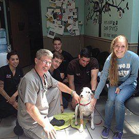 Animal Emergency Clinic of San Diego staff