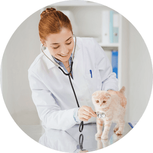 Veterinary treatment