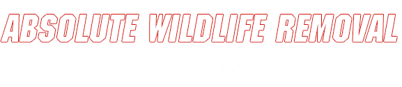Absolute Wildlife Removal - Logo