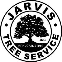 Jarvis Tree Service Inc - Logo