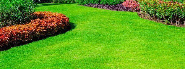 lawn care services seeding fremont ne
