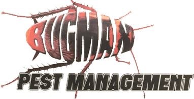 The Bugman Pest Management - Logo