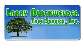 Larry Blackwelder Tree Service Inc-Logo