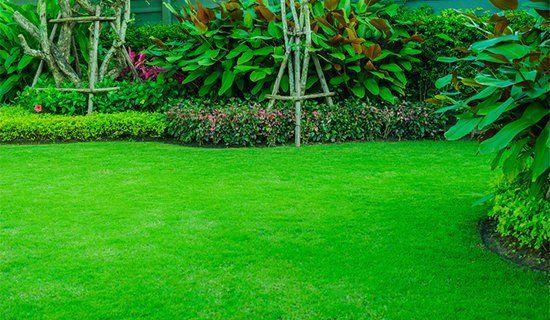 Gran-U-Lawn | Lawn Care Services | New Cumberland, PA