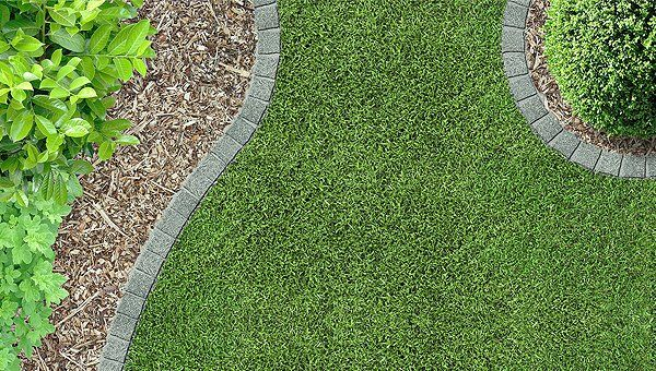 Makenzies Lawn Care | Lawn Specialists | Spencerville, IN