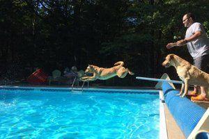 Tri City Pool Spa Grand Haven Mi