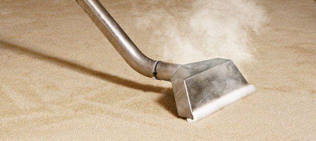 carpet being steam clean