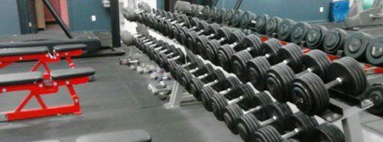 Quality Fitness Equipment